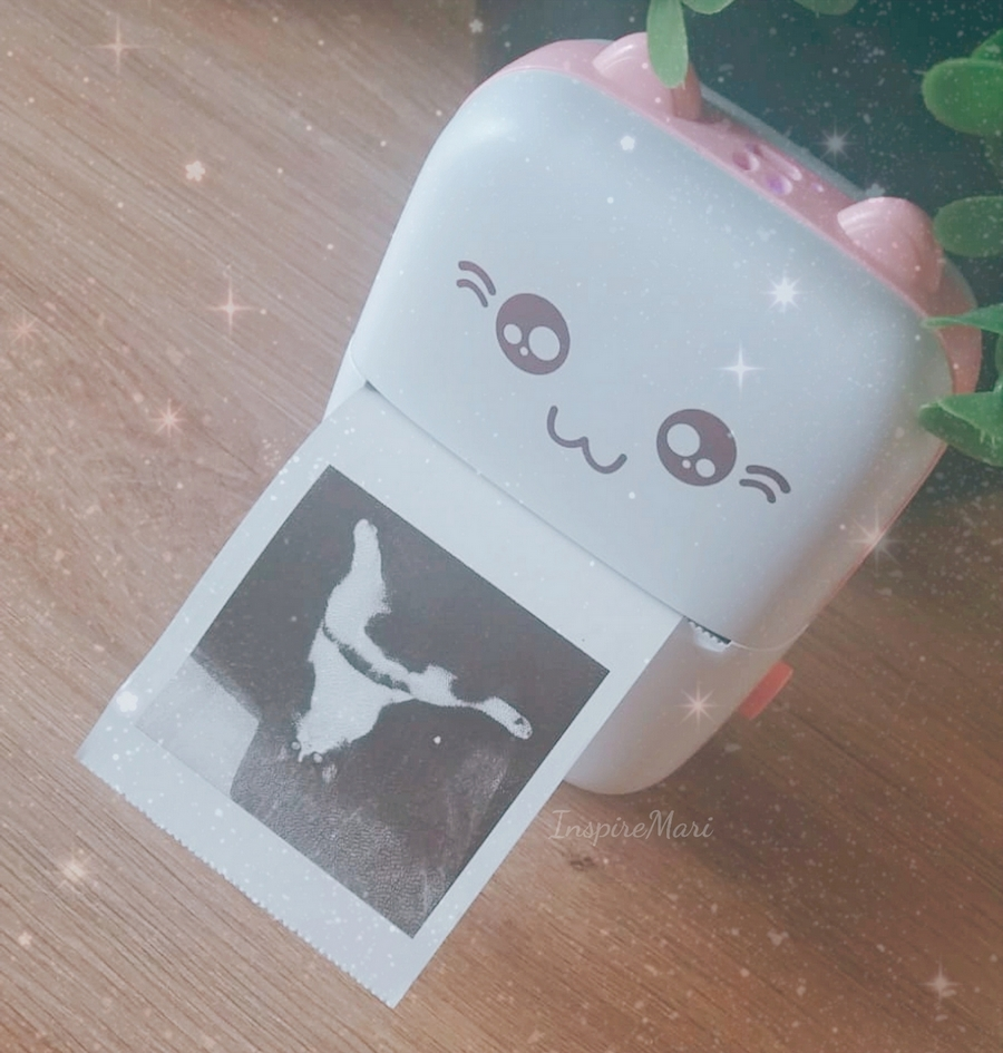 Cute Pink pocket Thermal Printer
