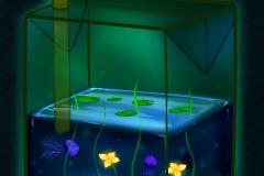 Aqua Life Drinking Carton