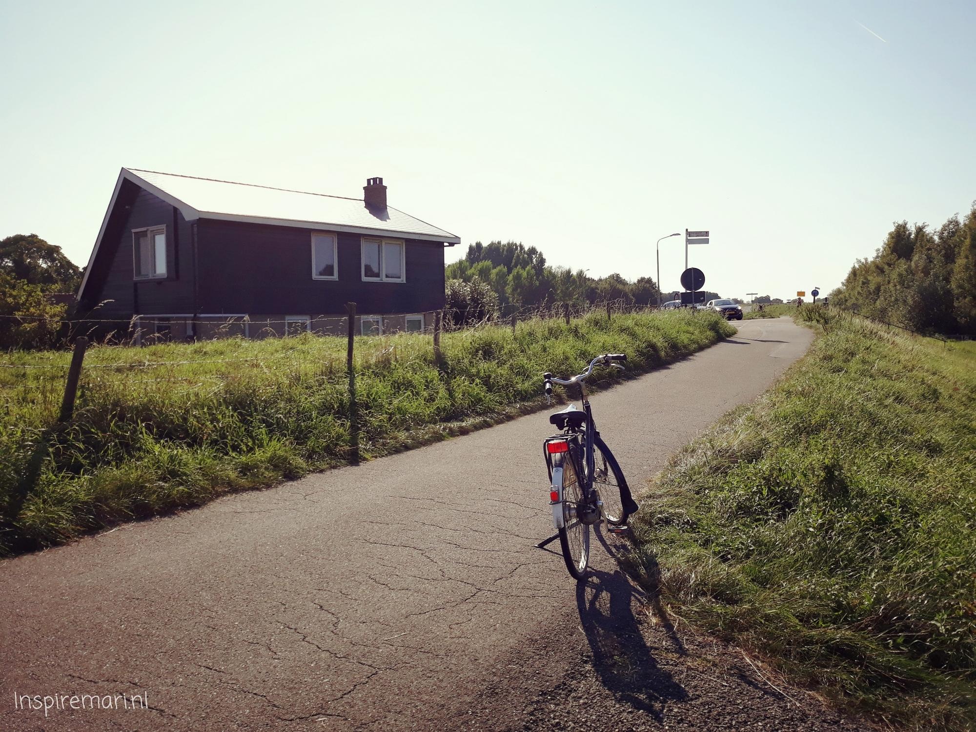 Bike Trip Grass and Water