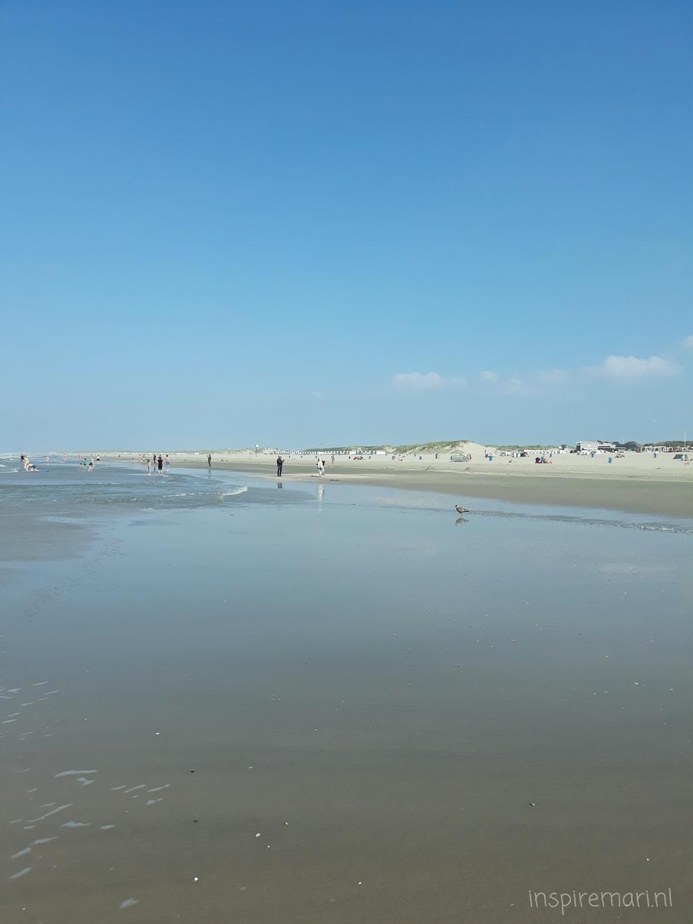 Hoek van Holland Strand ocean coastline view