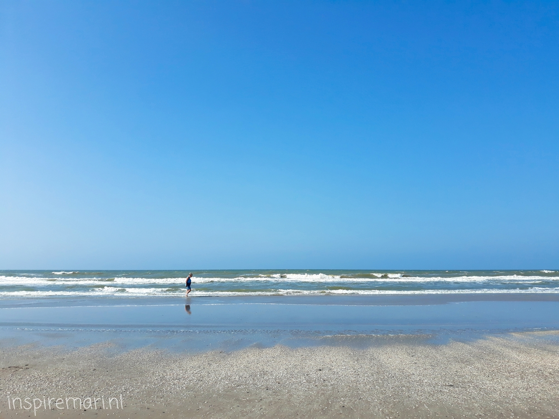 Hoek van Holland Strand Sea Water