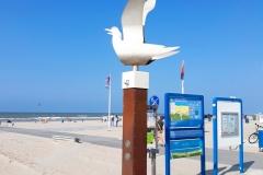 Hoek van Holland Beach