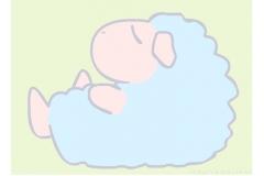 The Sleepy Sheep