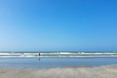Hoek van Holland Beach Sea View